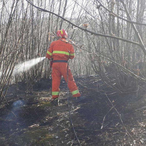 Uomo in tuta arancione Protezione Civile e casco rosso che spenge incendio nel bosco